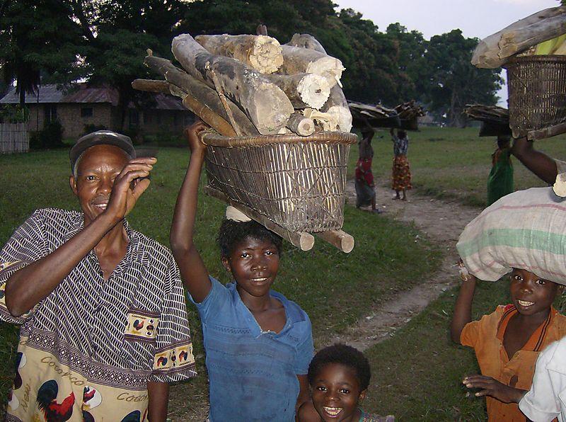 Congo2006WMC 203
