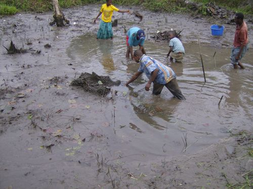 Congo2006WMC 323