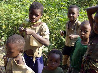 Congo2006WMC 484_edited