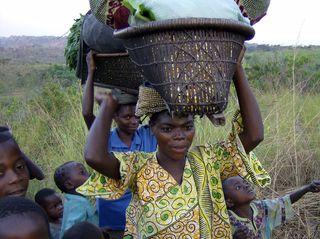 Congo2006WMC 274_edited