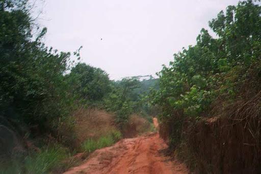 Suspected Ebola Virus Disease kills 17 in Congo