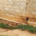 Erosion Damaging the Foundation